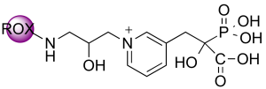 5(6)-ROX-RISPC