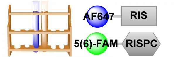 two-probe-bone-affinity-sampler-1-2
