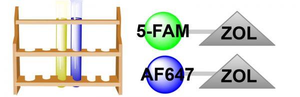 anti-resorptive-cellular-activity-sampler-1-3